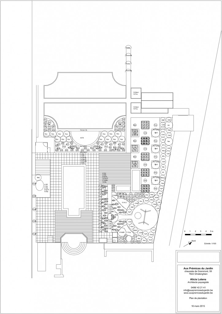 Plan de plantation piscine jardin contemporain