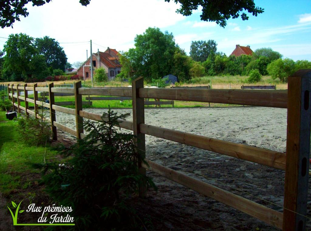 Clôture westminster chevaux bois Aux prémices du jardin aménagement équestre piste